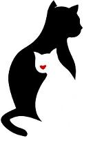 Katzen-Hilfe24